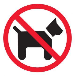 Nalepka zrcalna Prepovedano za pse